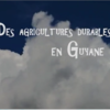 photo de Film Agricultures durables en Guyane