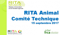 comitetechnique_ct-rita-09-2017.png