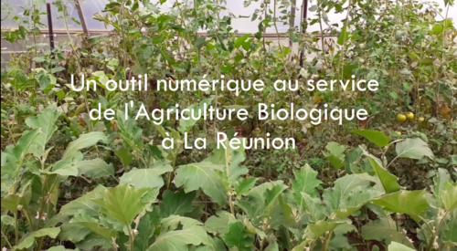 film5outilnumeriqueagriculturebiologique_film5.png