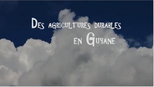 filmagriculturesdurablesenguyane_logo-agricultures-durables.png
