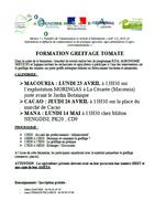 formationgreffagetomate_sans-titre2.png