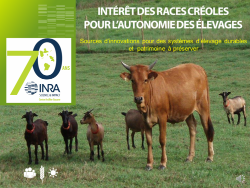 interetdesracescreolespourlautonomiedes_diaporama-races-creole-fete-de-la-science-2019.png