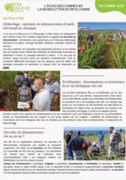 lechodescannes2lanewsletterduritaca_newsletter-2-1-sur-2.png