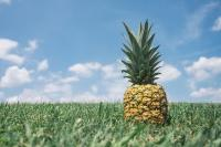 retenezladateunejourneetechniqueananas_pineapple-867245_640.jpg