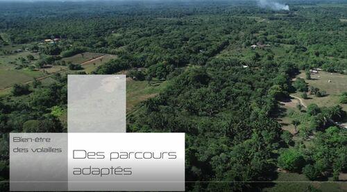 transagridomvideoparcoursdevolailles_images-parcours-volailles.jpg