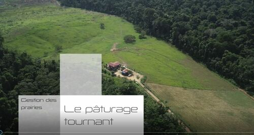 transagridomvideopaturages_image-paturage-tournant.jpg